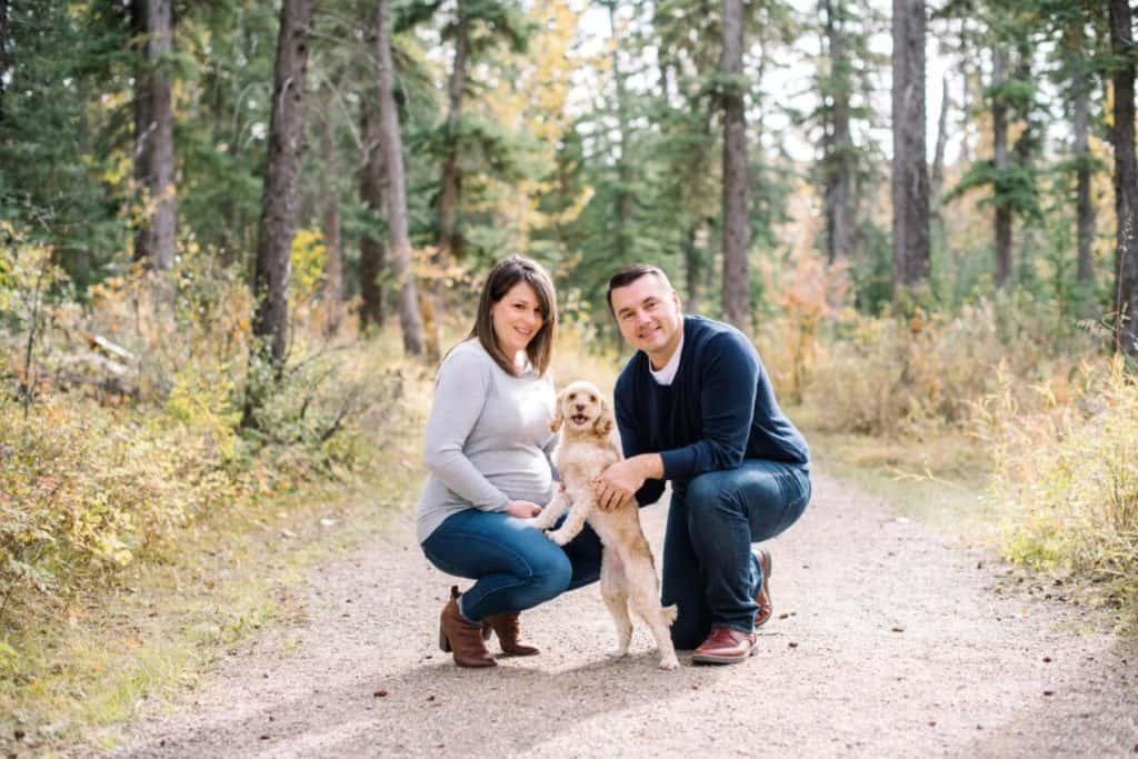 Pet Friendly Stays at CRMR in The Rockies